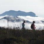 Hiking on Table Mountain