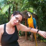 zoo de las aves