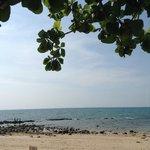 the beach near by