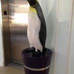 Penguin Greeter!