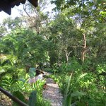 The grounds at Hacienda San Lucas