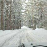 Park entrance road