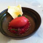 Rhubarb with Blood Orange Sorbet