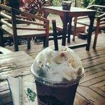 Cafe de Forest