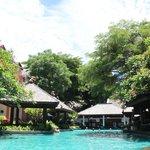 Территория отеля, бассейн