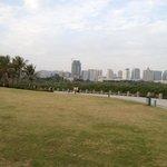 Mangrove Park - Shenzen