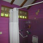 La salle de bain (accès handicapés)