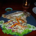 Red snapper on the plate