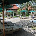 Pool at Banyan Treet