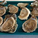 Fresh, icy oysters on the half-shell.  They frequently run out however depending on availability