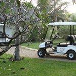 buggy to transport u around