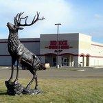 Estatua ciervo Miles City