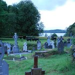 Check out the cows behind the Cemetery