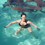 Swimming with sharks.....once in a lifetime!!
