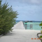 island walking area