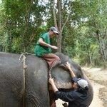 Riding The Elephant Bareback