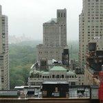 Central Park ao fundo