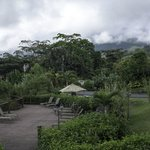 Hot springs 2