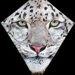 Snow Leopard kite by artist, JimThompson.