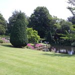 Looking across the lawn to the pond