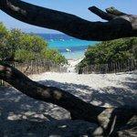 Spiaggia Saleccia