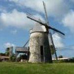 L'ile aux moulins