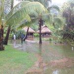 Flooded fish pond