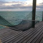My first favorite hammock