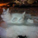 neve all ingresso
