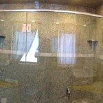 Adam's suite shower