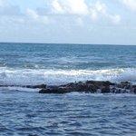 Desde las rocar en la orilla de la playa