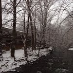 Snowy Creekside