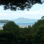 View through the gardens to Rangitoto island