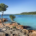 Palombaggia : pointe rocheuse