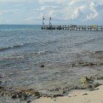 El muelle, unico lugar para ver peces con el snorkel sin pagar el barco