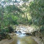Macaw Mountain Bird Park & Nature Reserve