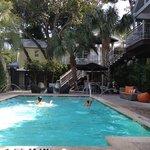 piscine ombragée