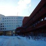 Universidad de Jonkoping