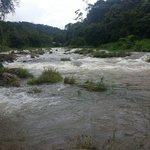 Avondale river