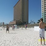daily friendly games of beach volleyball