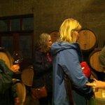 wine country birthday tour