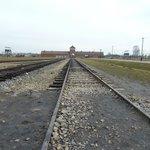 Auschwitz Birkenau 2