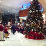 Holiday cheer to greet you in the lobby..