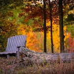 Autumn is sublime