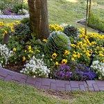 Gorgeous plantings