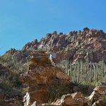 Rock climbing in Sabino Canyon