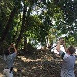 Ed and Alvaro shooting a tamandua