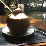 Une noix de coco fraiche
