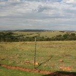 Krugersdorp Nature Reserve