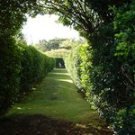 Maze in Formal Garden